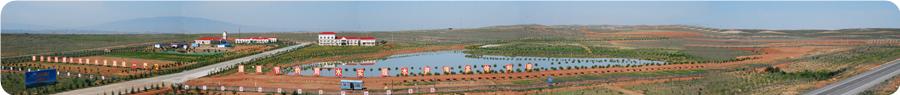 太阳山水厂.jpg