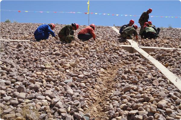 南坪水库大坝前期勘探试验、大坝裂缝灌浆安基础处理工程